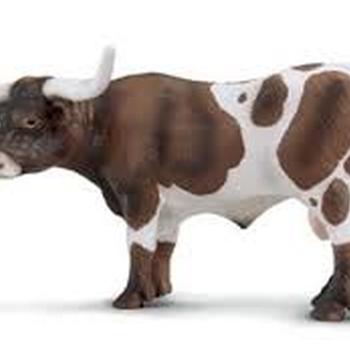 13275 Texas longhorn stier