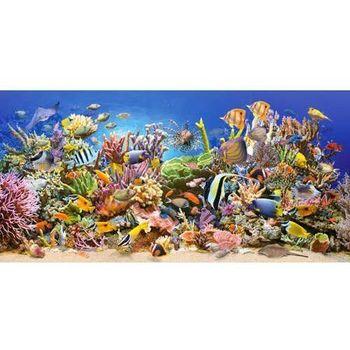 CA 400089 Onderwaterleven panorama