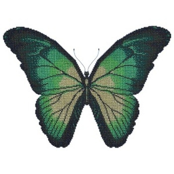 11033 Turquoise butterfly