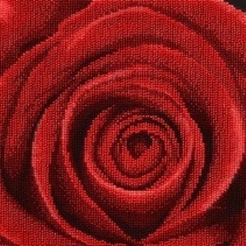 11004 Red rose