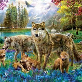 EU 5360 Wolf lake fantasy J Patrik 500 XXL st